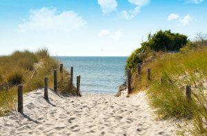 Ferienwohnung im schönen Küstenwald Graal-Müritz